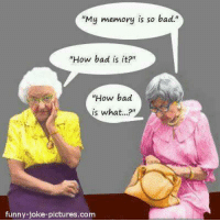 "#BigDaddy #dafuqfunnies: ""My memory is so bad.""  ""How bad is it?""  How bad  is what...?  funny-joke-pictures.com #BigDaddy #dafuqfunnies"
