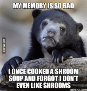 Bad, Shrooms, and Memory: MY MEMORY IS SO BAD  LONCE COOKED A SHROOM  SOUP AND FORGOTI DONT  EVEN LIKE SHROOMS  MEMEFUL.CO I barely know what I did yesterday