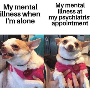 Being Alone, Lily, and Mental Illness: My mental  illness when  I'm alone  My mental  illness at  my psychiatris  appointment  LILY LU