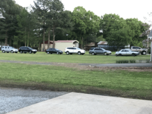 My Mexican neighbors are throwing a party today. I went over for a bit, and they said this is only ¼ of the people supposed to be there.: My Mexican neighbors are throwing a party today. I went over for a bit, and they said this is only ¼ of the people supposed to be there.