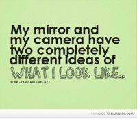 Memes, Camera, and Http: My mirror and  my camera have  two completely  different ideas of  WWW YANI LAVIGNE NET  YUNO GO TO DAMNLOLCOM? I don't know who to believe!