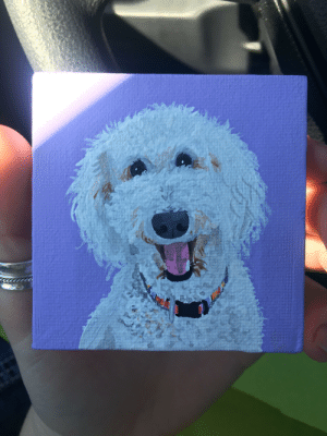my mom's labradoodle painted on a miniature canvas 😍: my mom's labradoodle painted on a miniature canvas 😍