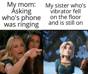 meirl: My mom:  Ásking  who's phone  was ringing  My sister who's  vibrator fell  on the floor  and is still on meirl