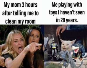 Memes, Tumblr, and Best: My mom 3 hours  after telling me to  clean my room  Me playing with  toys I haven't seen  in 20 years More of the best memes at http://mountainmemes.tumblr.com