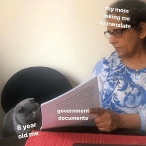 meirl: my mom  asking me  to translate  government  documents  8 year  old me meirl