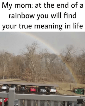 I'm the trash man: My mom: at the end of a  rainbow you will find  your true meaning in life I'm the trash man