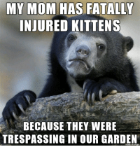 I am living with a monster: MY MOM HAS FATALLY  INJURED KITTENS  BECAUSE THEY WERE  TRESPASSING IN OUR GARDEN  made on imgur I am living with a monster