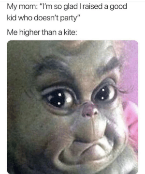 "Dank, Memes, and Party: My mom: ""I'm so glad I raised a good  kid who doesn't party""  Me higher than a kite: Not again by xBustItOpenx MORE MEMES"