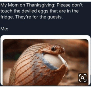 me_irl: My Mom on Thanksgiving: Please don't  touch the deviled eggs that are in the  fridge. They're for the guests.  Me: me_irl