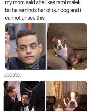 Remind me of my dog… via /r/memes https://ift.tt/2Qi7d0a: my mom said she likes rami malek  bc he reminds her of our dog and i  cannot unsee this  update: Remind me of my dog… via /r/memes https://ift.tt/2Qi7d0a