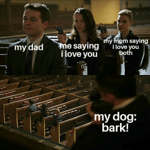 Dad, Family, and Love: my mom saying  i love you  both  me saying  i love you  my dad  my dog:  bark! Love your family :)
