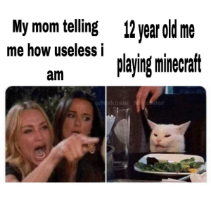 Playing minecraft is not being useless: My mom telling  12 year old me  me how useless i  playing minecraft  am  u/Nakoshi Niyander Playing minecraft is not being useless