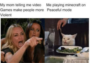 Minecraft, Video Games, and Games: My mom telling me video  Games make people more Peaceful mode  Me playing minecraft on  Violent