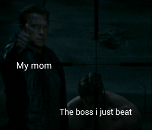 Reddit, Mom, and Boss: My mom  The boss i just beat Look mom i beat him
