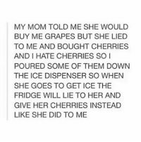 this is savage: MY MOM TOLD ME SHE WOULD  BUY ME GRAPES BUT SHE LIED  TO ME AND BOUGHT CHERRIES  AND I HATE CHERRIES SO  POURED SOME OF THEM DOWN  THE ICE DISPENSER SO WHEN  SHE GOES TO GET ICE THE  FRIDGE WILL LIE TO HER AND  GIVE HER CHERRIES INSTEAD  LIKE SHE DID TO ME this is savage