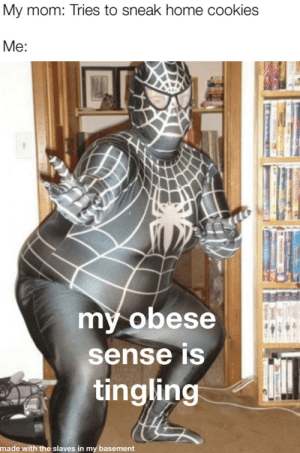 obese spiderman: My mom: Tries to sneak home cookies  Me:  my obese  sense is  tingling  made with the slaves in my basement obese spiderman