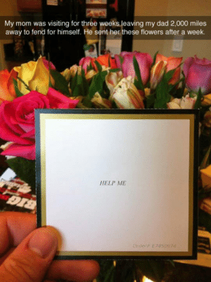 srsfunny:Helpless Husband: My mom was visiting for three weeks leaving my dad 2,000 miles  away to fend for himself. He sent her these flowers after a week  HELP ME srsfunny:Helpless Husband