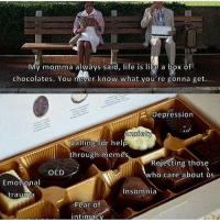 Life, Memes, and Depression: My momma always said, life is like a box of  chocolates. You never know what you're gonna get.  Depression  mxie  Calling for help  through memes  Rejecting those  who care about üs  OCD  Emotional  trauma  Insomnia  Fear of  intimacy All of those are pretty delicious, trust me 😂😂😂😂😂😂😂😂😂😂😂😂😂😂😂😂😂😂😂😂😂😂😂😂😂😂😂😂thisisntfunnyitsacryforhelp😂😂😂😂😂😂😂😂😂😂😂😂😂😂😂😂😂😂😂😂😂😂😂😂😂😂😂😂😂😂😂😂😂😂