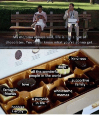 <p>Life is like a box of chocolates</p>: My momma always said, life is like a box of  chocolates. You never know what you're gonna get.  L kindness  dogs  Il thewonderful  people in the world  supportive  family  love  fantastic  friends  wholesome  memes  a purpose  in life  hobbies  enjo <p>Life is like a box of chocolates</p>
