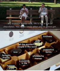 Dogs, Family, and Friends: My momma always said, life is like a box of  chocolates. You never know what you're gonna get.  kindness  dogs  all the wonderful  people in the world  supportive  family  love  fantasti  friends  wholesome  memes  a purpose  , in life  hobbies  i enjo Love this box of chocolates 🍫💝 wholesomememes source : fixedyourmeme | tumblr