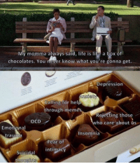 memes-r-memes:  When you're a fat shit and you accidentally eat the whole box: My momma always said, life is like a box of  chocolates. You never know what you're gonna get.  2 Depression  nxiety  Calling for help  through memes  Rejecting those  who caré about us  OCD  Emotional  Insomnia  trauma  Fear Of  intimacy  Suicidal  thougbts memes-r-memes:  When you're a fat shit and you accidentally eat the whole box