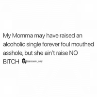 Bitch, Funny, and Memes: My Momma may have raised an  alcoholic single forever foul mouthed  asshole, but she ain't raise NGO  BITCH Asarcasm, only SarcasmOnly