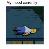 Memes, Mood, and Sleep: My mood currently I need sleep