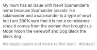 moon moon: My mum has an issue with Newt Scamander's  name because Scamander sounds like  salamander and a salamander is a type of newt  but I am 300% sure that it is not a coincidence  since it comes from the woman that brought us  Moon Moon the werewolf and Dog Black the  black dog  #fantastic beasts and where to find them