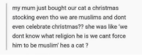 <p>Tis always the season for wholesome memes 🐱</p>: my mum just bought our cat a christmas  stocking even tho we are muslims and dont  even celebrate christmas?? she was like 'we  dont know what religion he is we cant force  him to be muslim' hes a cat? <p>Tis always the season for wholesome memes 🐱</p>