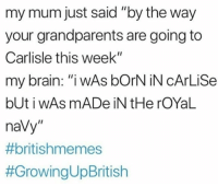 """Memes, Brain, and Navy: my mum just said """"by the way  your grandparents are going to  Carlisle this week""""  my brain: """"iwAs bOrN iN cArLiSe  bUt i wAs mADe iN tHe rOYaL  naVy"""""""