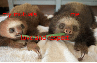Love, Respect, and And: my mutuals  me  love and respect