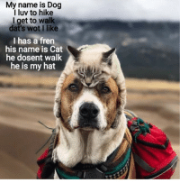 Cats, Dogs, and Happy: My name is Dog  I luv to hike  I get to walk  dat's wot I like  I has a fren  his name is Cat  he dosent walk  he is my hat Dogs and cats make each other happy