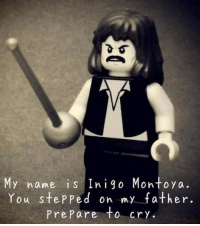 my name is inigo montoya: My name is Inigo Montoya.  You stepped on my father.  PrePare to cry.
