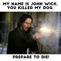 The plot of John Wick I in a meme.: MY NAME IS JOHN WICK  YOU KILLED MY DOG  PREPARE TO DIE! The plot of John Wick I in a meme.