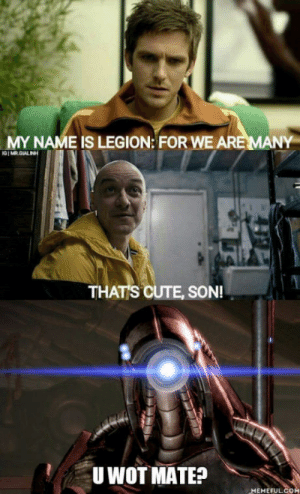 Cute, Wot, and Legion: MY NAME IS LEGION: FOR  WE ARE MANY  THATS CUTE, SON!  U WOT MATE?  MEMEFULCO We are Legion
