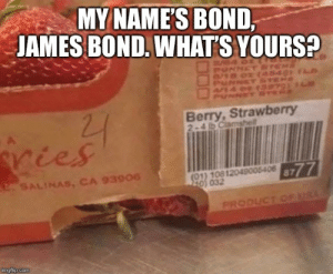 James Bond, Bond, and Com: MY NAME'S BOND,  JAMES BOND. WHATS YOURS?  Berry, Strawberry  SALINAS, CA 93906  8777  10) 032  PRODIC  imgflip.com Its Berry Straw.. Berry.