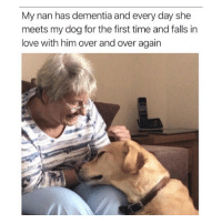 Love, Memes, and Dementia: My nan has dementia and every day she  meets my dog for the first time and falls in  love with him over and over again I have no words, only tears 😢