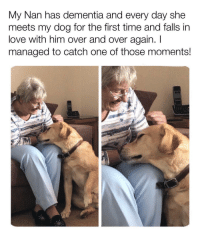 So many First Dates !!: My Nan has dementia and every day she  meets my dog for the first time and falls in  love with him over and over again. I  managed to catch one of those moments! So many First Dates !!