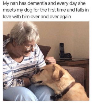 Love, Dementia, and Heart: My nan has dementia and every day she  meets my dog for the first time and falls in  love with him over and over again I can feel my heart melting just a little bit