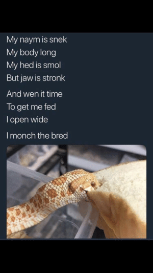 Nope rope by JohnDaBoss1 MORE MEMES: My naym is snek  My body long  My hed is smol  But jaw is stronk  And wen it time  To get me fed  l open wide  I monch the bred Nope rope by JohnDaBoss1 MORE MEMES