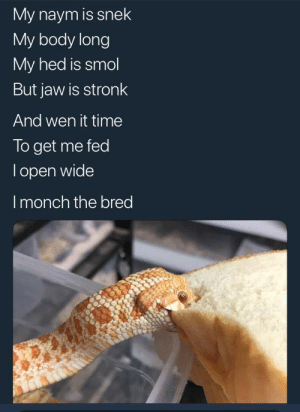 Http, Smile, and Time: My naym is snek  My body long  My hed is smol  But jaw is stronk  And wen it time  To get me fed  lopen wide  Imonch the bred Not mine, but I found it and it made me smile via /r/wholesomememes http://bit.ly/2Jhf8rK