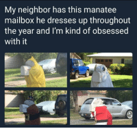 Memes, Dresses, and 🤖: My neighbor has this manatee  mailbox he dresses up throughout  the year and I'm kind of obsessed  with it  會, https://t.co/Md6VZW1vzf