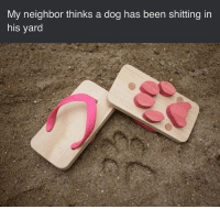 Memes, Fuck, and Been: My neighbor thinks a dog has been shitting in  his yard 😂😂😂 fuck 'em!!!