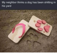 Fucking, Memes, and Wife: My neighbor thinks a dog has been shitting in  his yard That's for fucking my wife, Jim... 🖕🖕