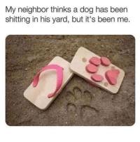 Been, Dog, and Yard: My neighbor thinks a dog has been  shitting in his yard, but it's been me.