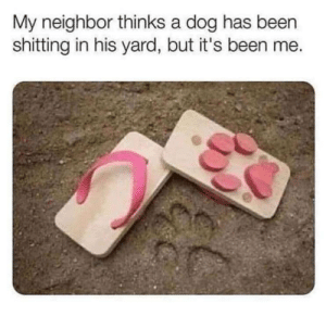 Been, Dog, and Yard: My neighbor thinks a dog has been  shitting in his yard, but it's been me. Illusion 100