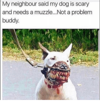 😑: My neighbour said my dog is scary  and needs a muzzle...Not a problem  buddy 😑