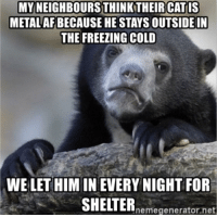 It's currently -6C outside: MY NEIGHBOURSTHINK THEIR CATIS  METAL AF BECAUSE HE STAYS OUTSIDE IN  THE FREEZING COLD  WE LET HIM IN EVERY NIGHT FOR  SHELTERnmegenerator.net It's currently -6C outside
