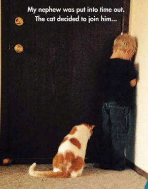 Indeed, Time, and Cat: My nephew was put into time out.  The cat decided to join him... A cate in need is a friend indeed