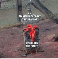Family, Friends, and Memes: MY NETFLIX ACCOUNT  THAT I PAY FOR  MY FRIENDS  AND FAMILY Have you thanked them